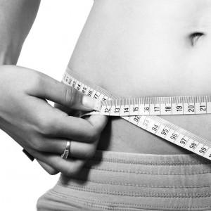 ALCAÑIZ pixabay belly-2354_1280