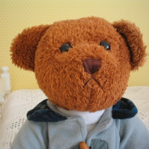 ALCAÑIZ pixabay teddy-bear-82005_1280 cut